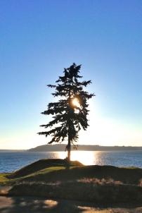 Chambers Bay, Tacoma 2 © mib 2o16