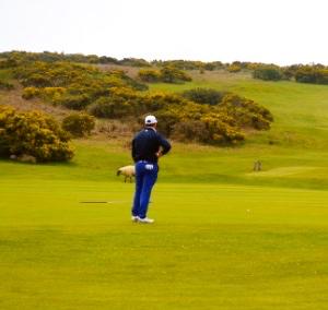 Southerndown Golf Club Wales @ ask 2o17